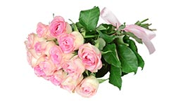 wedding-bouquet-pink-roses